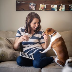Dana Osborne Design Dog Couch Graphic Design Omaha, Nebraska