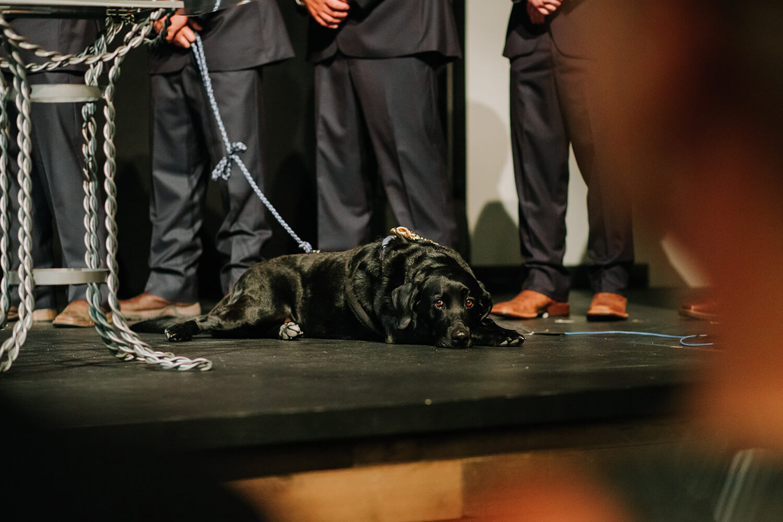 groomsmen dog honoring loved ones at wedding